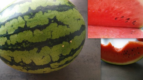 Collage_Wassermelone_BSL