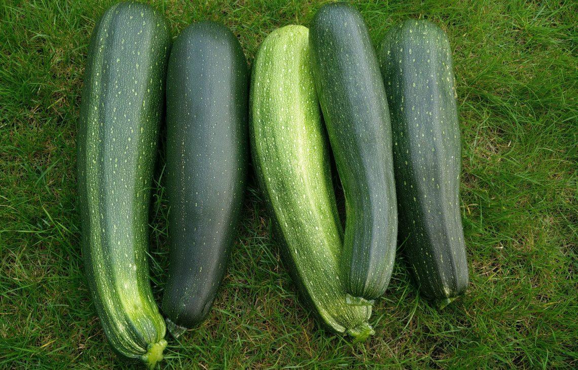 BSL-SuperGemüse_Bild1
