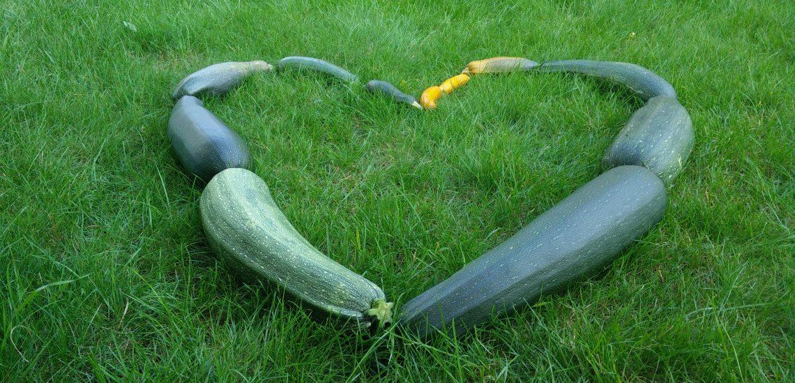 BSL-SuperGemüse_Bild2