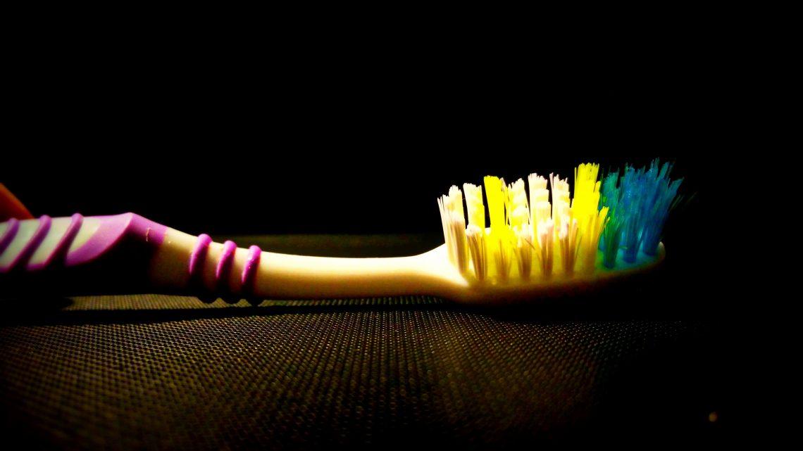 Bild 1, Zähne