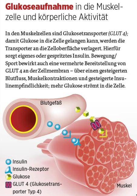 Diabetes-Journal - 8/2014 unter Verwendung von fotolia.com