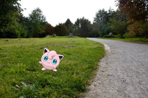 Pokemon auf Wiese