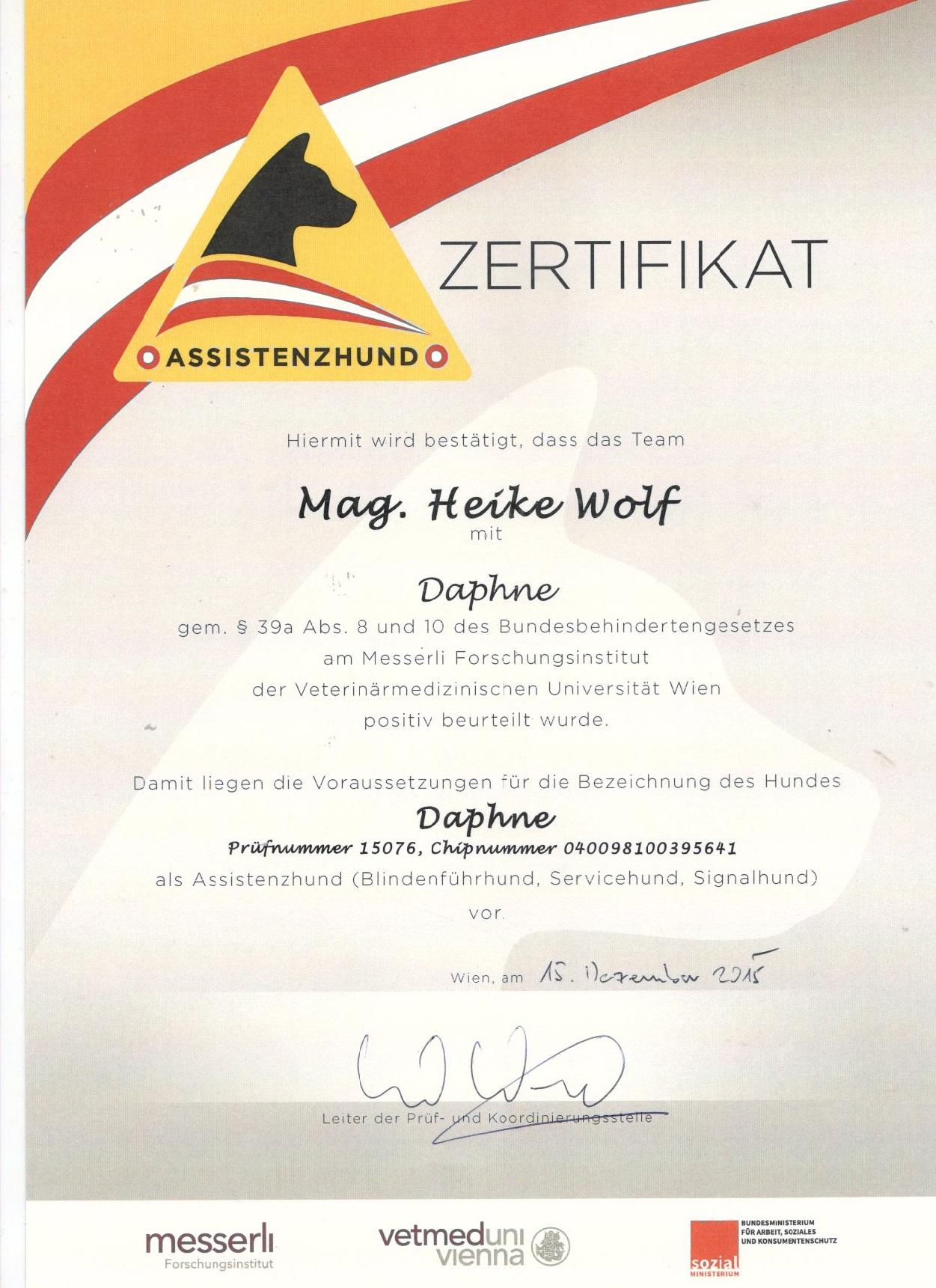 Asssitenzhund_Daphne