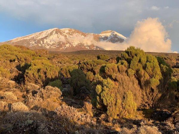 Ein Blick auf die Natur rund um den Kilimandscharo