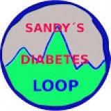 Profilbild von sandysdiabetesloop